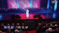 俄罗斯2012年胜利日扎拉唱《阿廖沙》