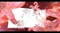 Videohive Wedding Fairy唯美浪漫婚礼小仙女AE模版