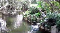 深圳,公园,溪流,民俗村,高清视频素材,影视素材来自西橘网