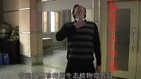 目前唯一完整中老年经络拍打养生保健操-yunzhenge.taobao.com