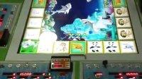 飞禽走兽游戏机金鲨银鲨QQ547123421;18824929188