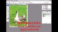平面设计网站 网页设计教程 室内设计教程 去除照片中多余的物体