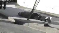 超级笑癫:看了这个视频,你一定会蛋疼(www.mmxdy.net巨蟒大战恐鳄 )