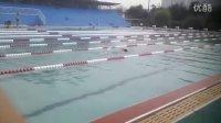 本人在华油体育场游泳池深水池50米自由泳视频,录制:蒙长园,游泳者:韩建全