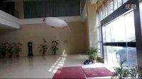 视频: 温岭海华模型俱乐部室内飞艇QQ群36049295