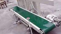 玉米面包装机 玉米粉定量包装机