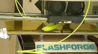 FlashForge 3D printer fish skeleton Shanghai Maker Carnival