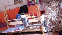 昆明数码鹰的灰鹦鹉转喉|数码鹦鹦鹉训练[训鸟QQ群310059830]