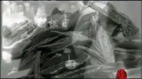 视频: 十大名茶:六安瓜片QQ2511709254