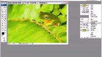 人物数码照片处理技法大全视频教程29修正偏色照片