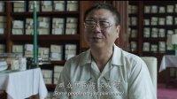 星映话 2013 星映话-《私人订制:圆梦贺岁》(下集)