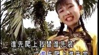 小萍萍-采槟榔伴奏(金钱豹唱片)