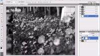 """[PS]Photoshop 数码照片处理教程-097""""黑白""""调整图层"""