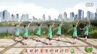 刘春英广场舞 美丽的草原欢迎你 背面演示及动作分解