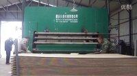 三聚氰胺板 生态板 免漆板热压机