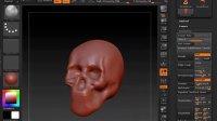 ZBrush雕刻——头骨快速构造b
