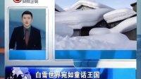 新闻全方位20140210瑞士村庄房顶堆满积雪