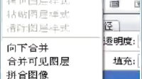2011年12月28日晚上八点梅雨老师的PS小图《我忘了说》课录