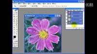 平面设计软件官网下载平面设计入门 平面设计教程 平面设计视频