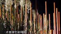 俞孔-房地产景观规划设计10