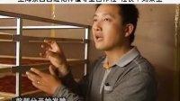 西红花/藏红花种植视频