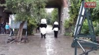 [天堂Zoo] Panda's ontsnappen uit Pairi Daiza