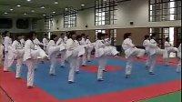 高一体育跆拳道教学视频 孙波