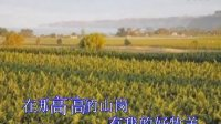 视频: 青青草场   野地百合