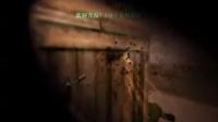 视频: FREE eimen 视频