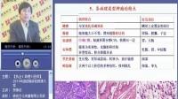 视频: 2011年贺银城执业医师-病理学4(QQ1578885630)