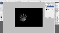 [PS]PS教程Photoshop滤镜制作光影花叶效果视频教程
