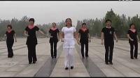 天天美16拍19步广场舞附背面分解《兔子舞》(2013.6.17)_标清