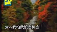 张震岳 再见