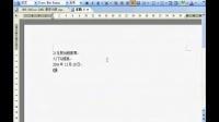 WPS Office 2005文字04 视频教程(21互联出版)