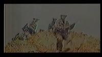 对越自卫反击战胜利38年纪念晚会