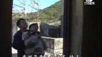 甄子丹飞虎群英7TVB星河高清