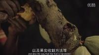 """可可百利®新一代调温巧克力 """"自然之选""""  产品特性"""