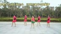 可爱玫瑰花广场舞 30步恰恰舞 含正反面分解动作(超清)