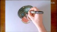 快速手绘画-如何画写实西瓜 手绘作品大全[高清版]