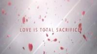 唯美玫瑰花瓣雨中的爱情语录AE模板 Love Quotes Valentine Proje