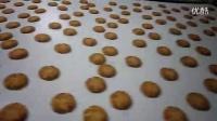 江苏海特尔机械|桃酥饼干生产理饼机