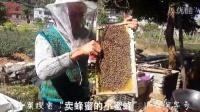 """父亲头带带防蜇斗笠在挖蜂王蛹 淘宝""""卖蜂蜜的小蜜蜂""""淘字号"""