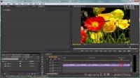 premiere cc实例教程24:复制特效的应用——动态电视墙_群:248477432
