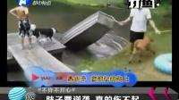 视频: 打渔晒网20140408期