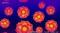 三维红色牡丹花蓝色背景中盛开 LED大屏高清视频背景素材