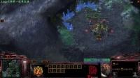 Zoo星际争霸Loup 4.11晚第一视角直播录像