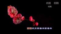 【红梅赞】二胡加口琴 (演奏:老曲萨克斯、magguliu)-踏青 演奏 萨