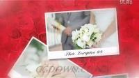 柔美温馨浪漫的玫瑰花瓣婚礼相册AE模板视频素材来自西橘网