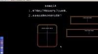 秀革箱包CAD出格系统视频-专业组-6-自动墙边