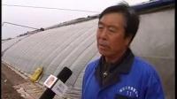 视频: 北林新闻2014.05.05(东兴办 念好围城瓜菜 生态经)